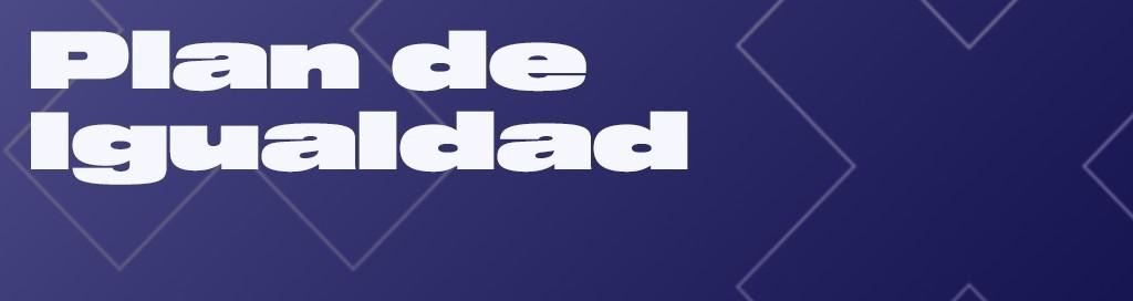SDE / FUNDAZIOA / POLÍTICAS SOCIALES / PLAN DE IGUALDAD
